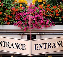 Entrance Sign by Rae Tucker