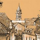 Roofs in Transylvania by Dasidaria Hardcastle