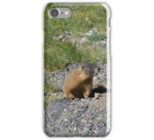 morning marmot iPhone Case/Skin