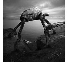 Turtlezaurus Photographic Print