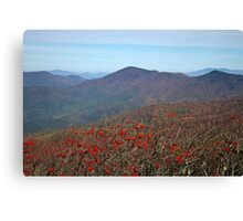 View from Craggy Dome Mountain Canvas Print