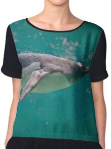 Swimming with Penguins Chiffon Top