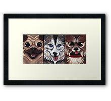 All The Dogs Framed Print