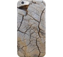 high desert iPhone Case/Skin