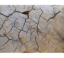high desert Photographic Print