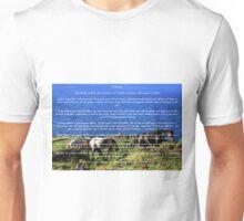 Desiderata #2 Unisex T-Shirt