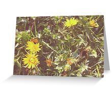 Little summer yellow flowers Greeting Card