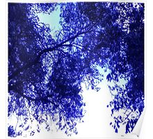 Blue Purple White Clouds and Trees Poster