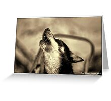 HOWLING DOG Greeting Card