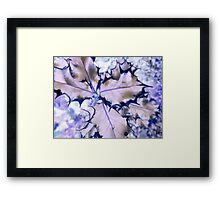 Nature Prints III Framed Print