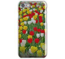 Tulips in a Field iPhone Case/Skin