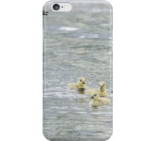 Canada Goose Family iPhone Case/Skin