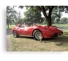 1976 Corvette Stingray Canvas Print