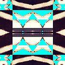 Zebra Changing Stripes by Melissa de Klerk