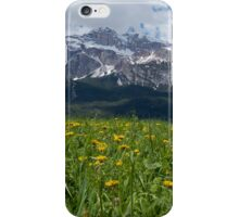 Dolomites iPhone Case/Skin