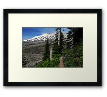 Ape Canyon Trail - Mt St Helens Framed Print