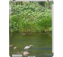 Urban Wildlife Habitat - Los Angeles River iPad Case/Skin