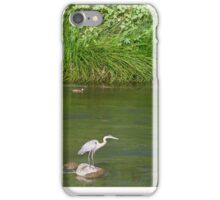 Urban Wildlife Habitat - Los Angeles River iPhone Case/Skin