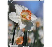 Daffodil II iPad Case/Skin