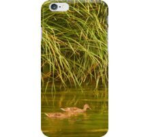 Urban Wildlife Habitat - Los Angeles River 2 iPhone Case/Skin