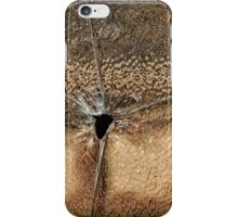 Bullet Hole iPhone Case/Skin