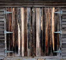 shed 1 by Ross Hipwell