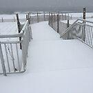 Winter Boardwalk by Jacker