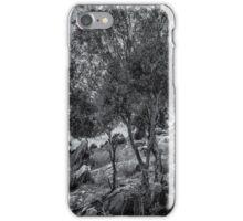 Monochrome Tree iPhone Case/Skin