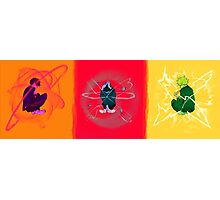 Psychic Triptych Photographic Print
