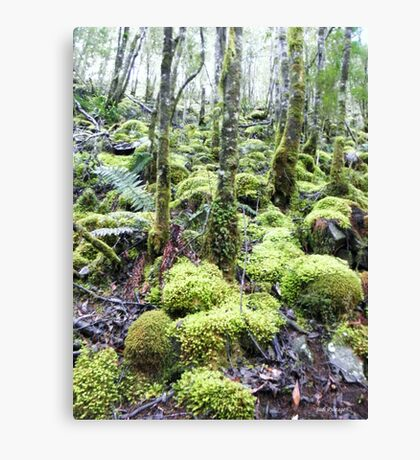 How Green are the Hills Canvas Print