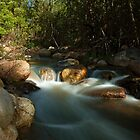 Canberra Australia  River at Tidbinbilla  by Kym Bradley