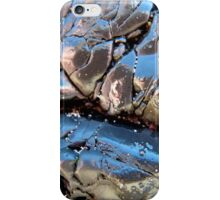 I Am The Walrus iPhone Case/Skin