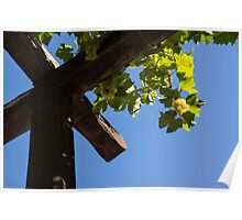 Blue Sky Grape Harvest - Thinking of Fine Wine Poster