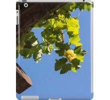 Blue Sky Grape Harvest - Thinking of Fine Wine iPad Case/Skin