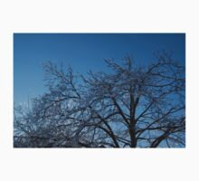 Ice Storm 2013 - Brilliant, Icy Blue Tree Branches Baby Tee