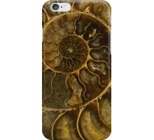An Ancient Treasure  iPhone Case/Skin