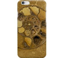 An Ancient Treasure II iPhone Case/Skin