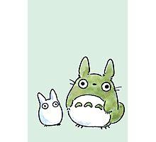 Totoro Chibi Photographic Print