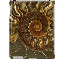 An Ancient Treasure V iPad Case/Skin