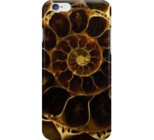 An Ancient Treasure VI iPhone Case/Skin
