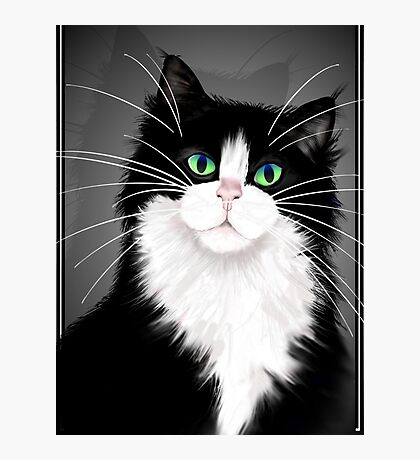 TUX-Tuxedo cats rock Photographic Print