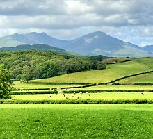 A Lakeland Panorama by Jamie  Green