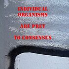 Message 14 - Individual v consensus by TonyBroadbent