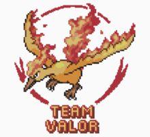 Team Valor Classic Baby Tee