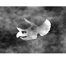 Triceratops skull Grunge style Photographic Print