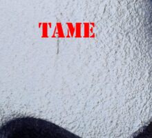 Message 18 - ANARCHY IS TAME Sticker