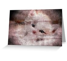 To look into the eyes of a kitten. Greeting Card