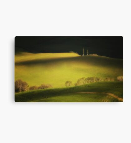 Two cypresses Canvas Print