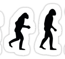 Drummer evolution Sticker
