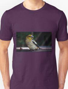 Birds portrait Unisex T-Shirt